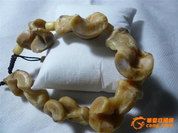 动物骨骼牙齿手串