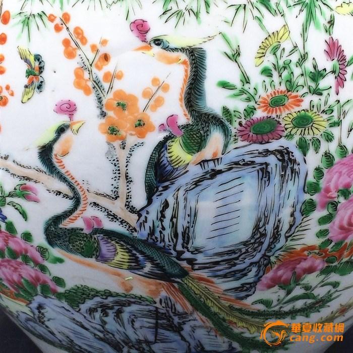 不同花纹的孔雀图简笔画